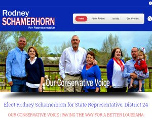 political campaign websites